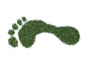 footprint-e1489414172959